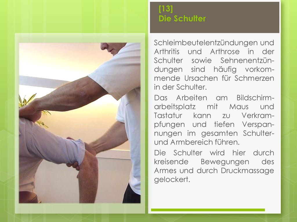 [13] Die Schulter